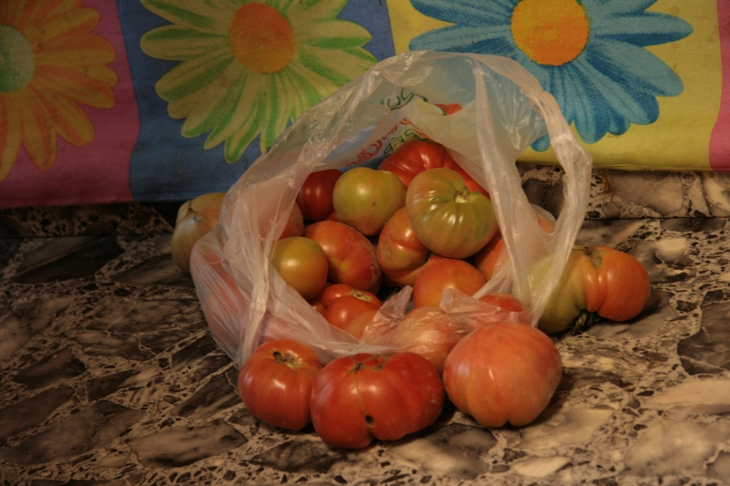 home made tomatos