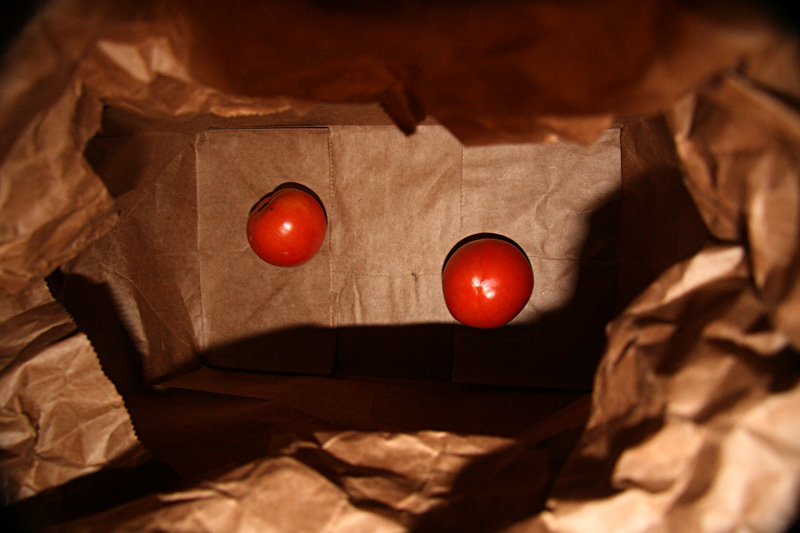 Empty Bag-0-Tomatoes